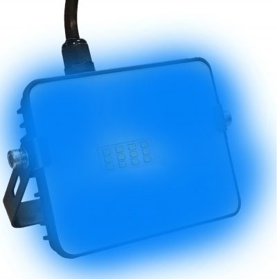 10w Blue LED Flood Light